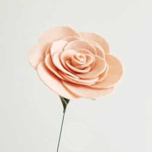Rose - Blush Pink